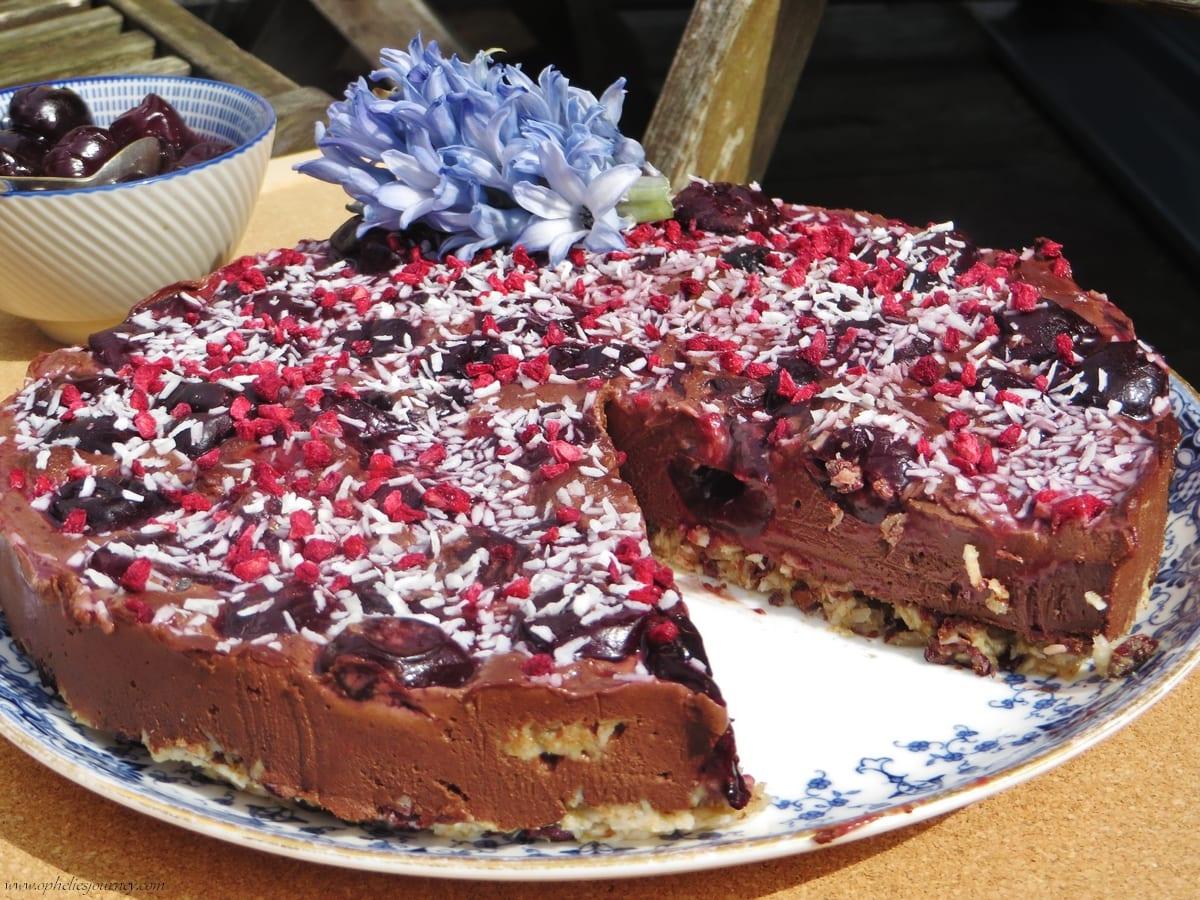 Faire un gâteau cru au chocolat avec un blender : la recette ultra simple et saine