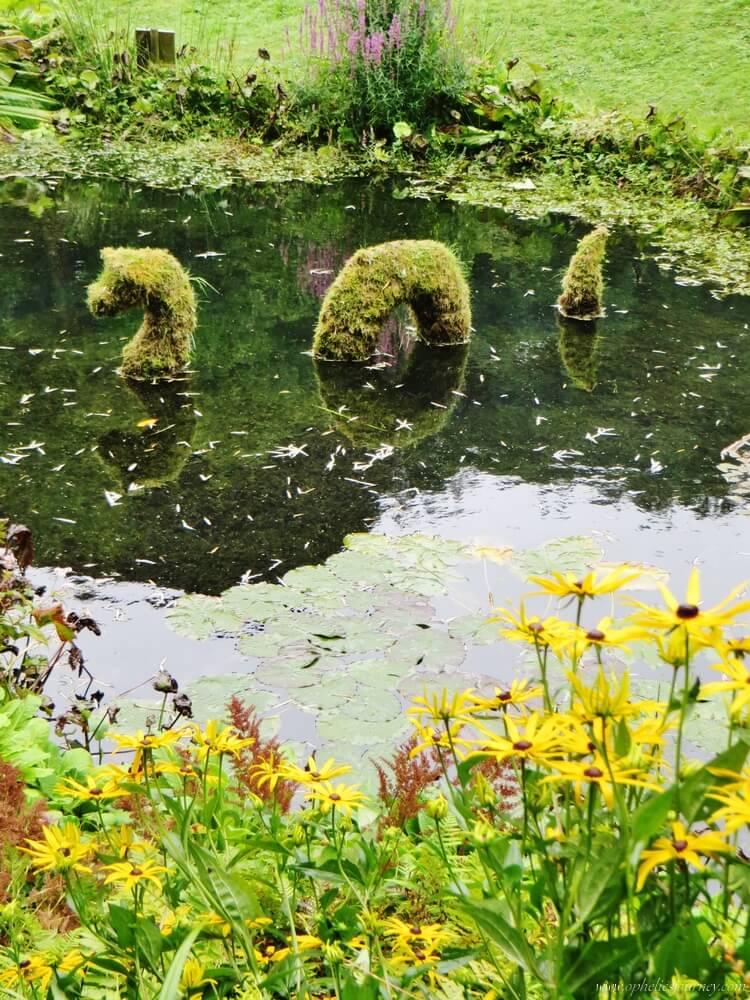 Trebah-Garden-cornouailles