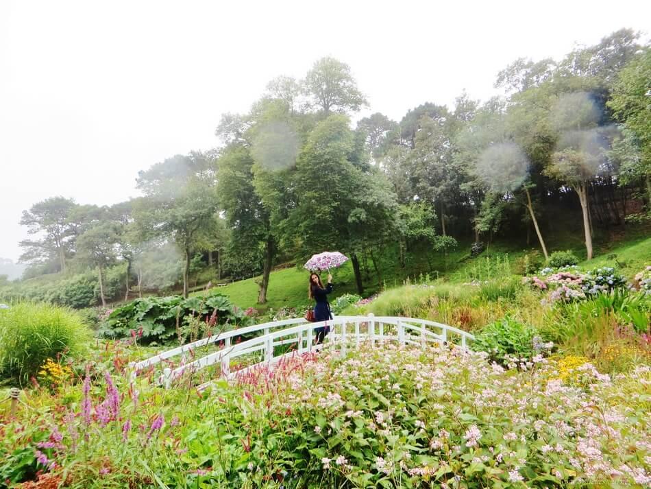 Trebah-Garden-falmouth