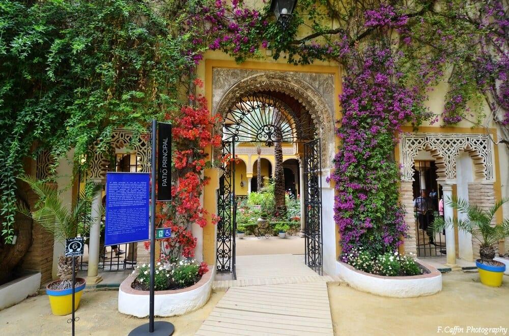 palacio-de-las-duenas-seville